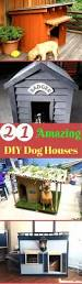 best 25 small dog house ideas on pinterest outdoor dog houses