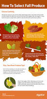 what u0027s in season the best fall foods