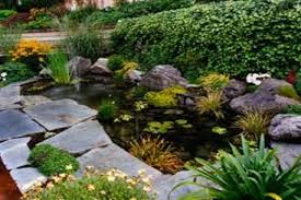 Pond Landscaping Ideas Etikaprojects Com Do It Yourself Project