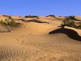 desert landscape wallpaper 1024x768 79489