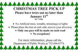 Christmas Tree Pick Up Millstone The Source