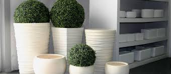 vasi da interno vasi e fioriere