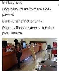Hello Meme Funny - dopl3r com memes banker hello dog hello id like to make a de