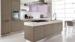modern kitchens ideas amusing modern kitchens interior design 15 kitchen cabinets for