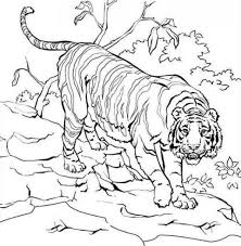 coloring pages coloringpagees twitter