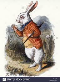 adventures of rabbit s adventures in the white rabbit see