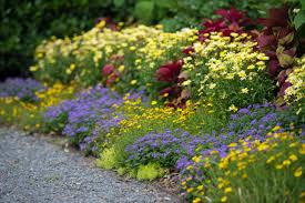 best garden border ideas diy network blog made remade diy