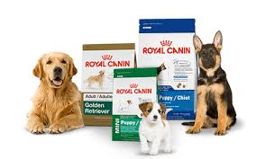 royal canin diets veterinarians in kenai ak kenai veterinary