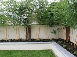 rendered wall raised beds 14 jpg 800 600 pixels projects to