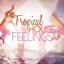 tropical photo album various tropical house feelings at juno