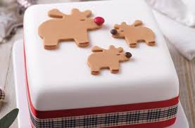 Wilton Cake Decorating Ideas Gift Idea Easy Cookie Recipes Icing Concepts Decorating For How To