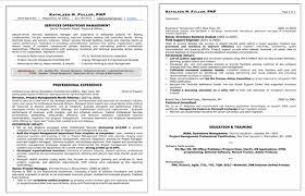 professional resume com professional resumes for middle u0026 upper management executive