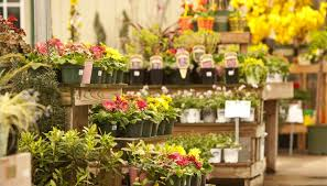 flowers shop how to write a business plan for a flower shop bizfluent