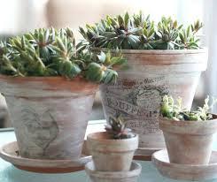 plants pots ideas broken pot fairy garden 3 container plant ideas