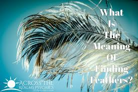 angel feathers i signs i color meanings i messages i symbolic