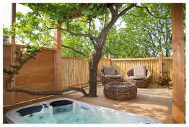 chambre arbre la cabane d eglantine