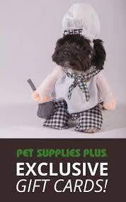 halloween city sheboygan wi best 25 pet supplies plus ideas on pinterest first come first