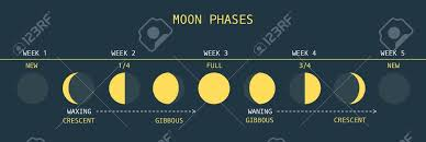 2 467 moon phases stock illustrations cliparts and royalty free