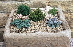 bbc gardening gardening guides techniques make a mini