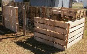 100 backyard chicken supplies handling a contagious illness in