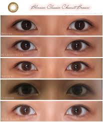 Light Brown Contact Lenses Drunk With Caffeine Sr Blincon Classic Chestnut Brown Review