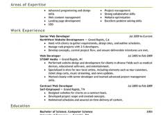 Web Developer Resume Examples by Nice Inspiration Ideas Web Developer Resume Examples 10 Best It