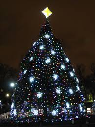 the national christmas tree the weekend roady