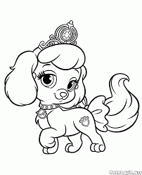 coloring page puppy pumpkin