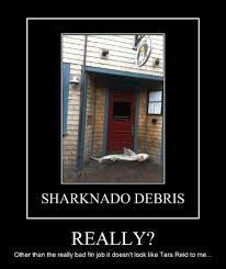 Sharknado Meme - memebase sharknado all your memes in our base funny memes