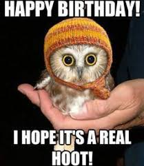 Cute Baby Animal Memes - top funny birthday memes birthdaywishings com