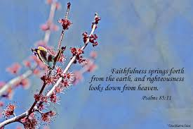 spring with scripture free download wallpaper 1600 x 1067