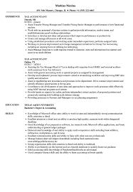 sle resume templates accountants compilation report income tax accountant resume sles velvet jobs