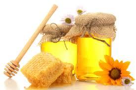 Seeking Honey Maritime Honey Festival Set For September 23 24 2017