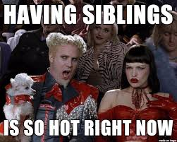 National Sibling Day Meme - mrw i m an only child and national siblings day becomes a thing