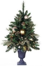 100 clear christmas tree mini lights 4