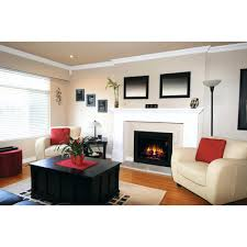 electric fireplace inserts home depot canada fireplaces at awesome