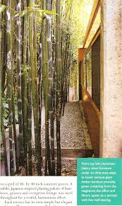 bamboo garden design garden design ideas