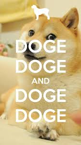 So Doge Meme - pin by drienne e on shiba lovers pinterest doge memes and meme