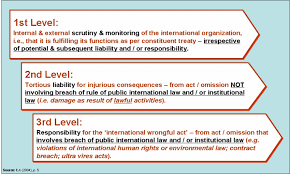 international organizations for human rights levels of accountability of international organizations