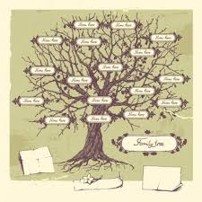 one example of a family tree illustration copyright liliya
