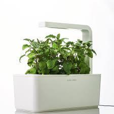 indoor garden kit gardening ideas
