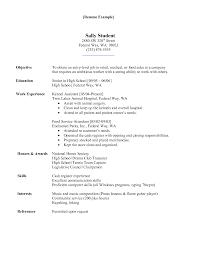 computer skills resume sample secretary resume computer skills dalarcon com veterinary assistant resume free resume example and writing download