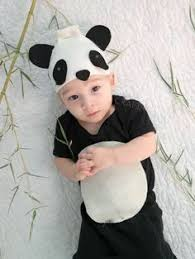 6 12 Month Halloween Costumes 4 Month Boy Halloween Costumes Infant Baby Panda Bear