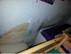 schimmel im schlafzimmer entfernen schimmel im schlafzimmer entfernen schimmel im schlafzimmer