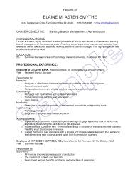 project manager sample resumes assistant manager resume format it manager resume page 2 project