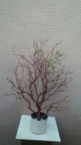 manzanita branches for sale manzanita branches arts crafts in az offerup