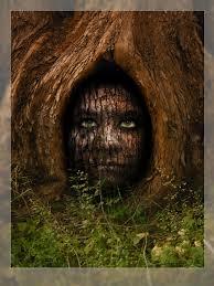 tree face tree face by kkokosz on deviantart