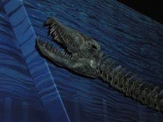 here is a sneak peek of archelon ruler turtle after being