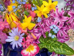 spring flowers images free hd desktop wallpapers 4k hd