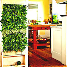 indoor garden vegetable gardening breathtaking vertical and green
